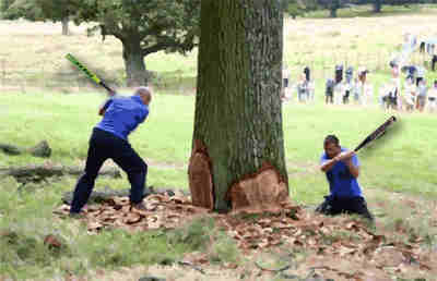 2 men hitting a tree with bats